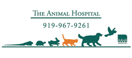 The-Animal-Hospital-of-Carrboro